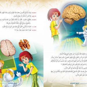 الجهاز العصبى 4